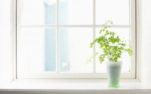 12 meses, 12 hábitos. Abril: Mantener la casa ordenada y limpia